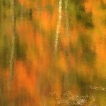 Juri Vosu / Autumn Reflections / 2nd / Print Level 1 Artistic