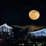 Tony Paine - Mississauga Moonrise - 1st - Digital Intermediate Pictorial