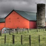 Marcus Miller - Orange Barn - 2nd - Digital Intermediate Pictorial