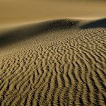 Sherry Prenevost - Dunes - HM - Digital Beginner Nature